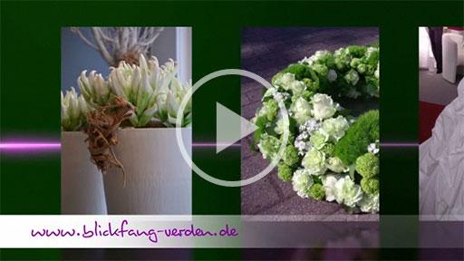 Blickfang Verden - Blumen & Deco, mal anders ...